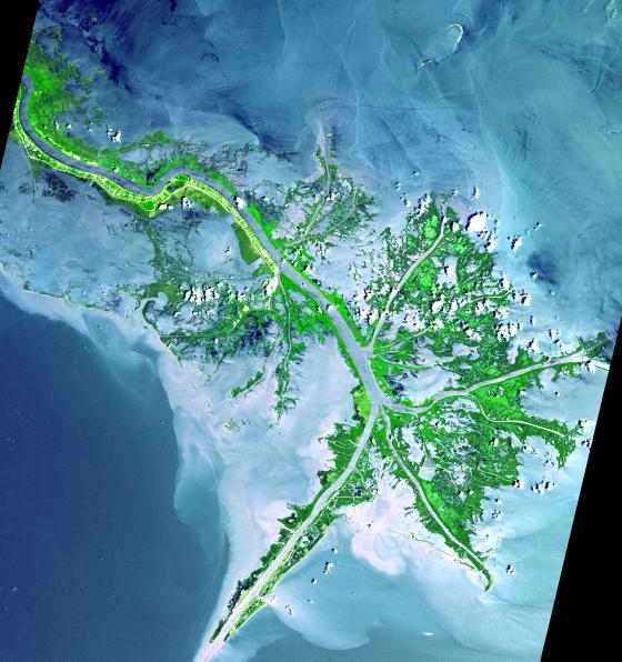 Mississippi Delta imaged by the ASTER instrument onboard NASA's Terra Satellite in 2001