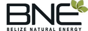 Belize Natural Energy logo