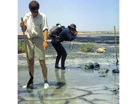 Image of ponded algal/cyanobacterial stromatolites