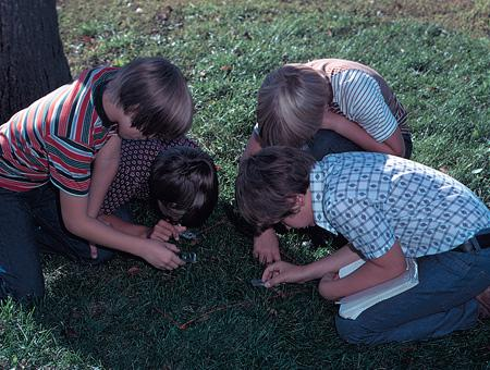 Image of students on lawn